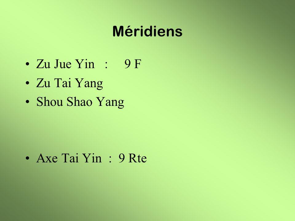 Méridiens Zu Jue Yin : 9 F Zu Tai Yang Shou Shao Yang Axe Tai Yin : 9 Rte