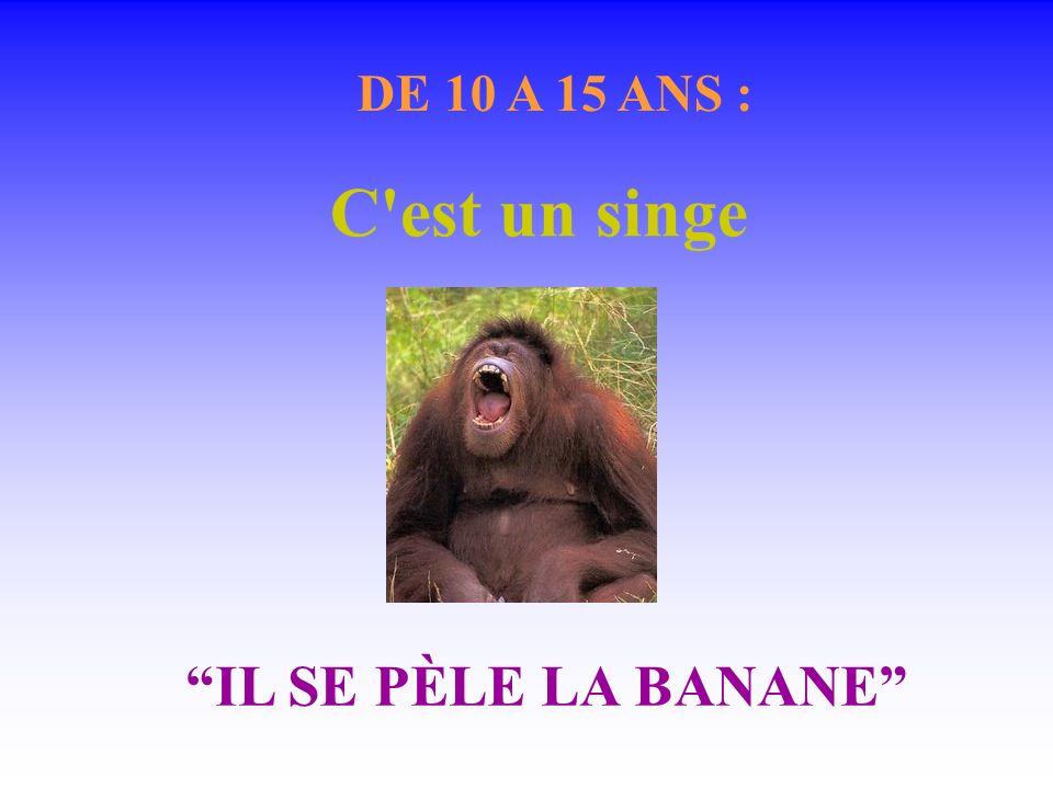 DE 10 A 15 ANS : C est un singe IL SE PÈLE LA BANANE