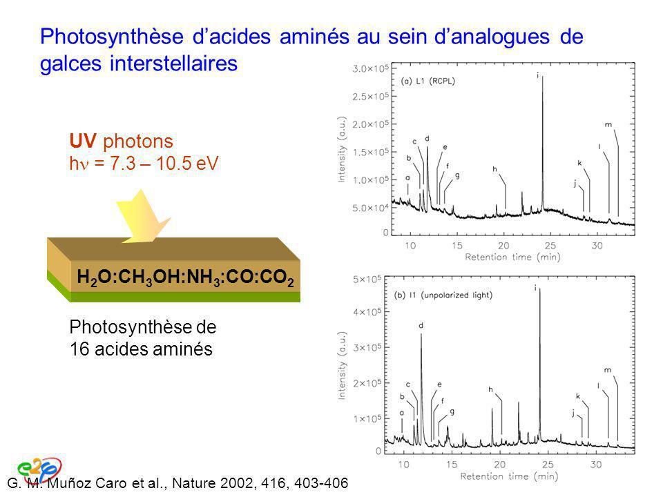 Photosynthèse dacides aminés au sein danalogues de galces interstellaires Photosynthèse de 16 acides aminés H 2 O:CH 3 OH:NH 3 :CO:CO 2 UV photons h =