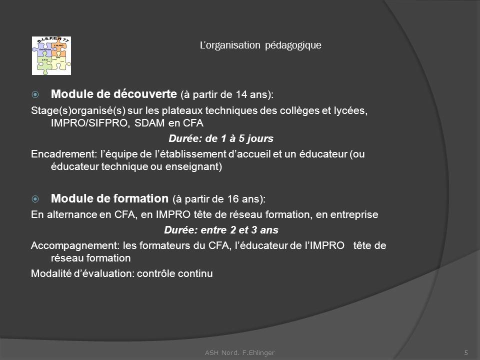 Lorganisation pédagogique Module de découverte (à partir de 14 ans): Stage(s)organisé(s) sur les plateaux techniques des collèges et lycées, IMPRO/SIFPRO, SDAM en CFA Durée: de 1 à 5 jours Encadrement: léquipe de létablissement daccueil et un éducateur (ou éducateur technique ou enseignant) Module de formation (à partir de 16 ans): En alternance en CFA, en IMPRO tête de réseau formation, en entreprise Durée: entre 2 et 3 ans Accompagnement: les formateurs du CFA, léducateur de lIMPRO tête de réseau formation Modalité dévaluation: contrôle continu 5ASH Nord.