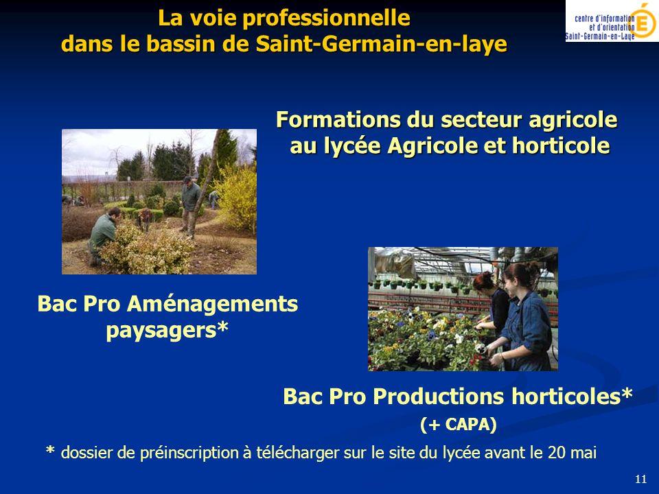 Bac Pro Productions horticoles* (+ CAPA) Formations du secteur agricole au lycée Agricole et horticole La voie professionnelle dans le bassin de Saint