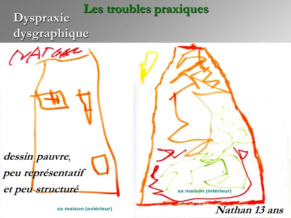 Dyspraxie dysgraphique Nathan 13 ans Les troubles praxiques dessin pauvre, peu représentatif et peu structuré