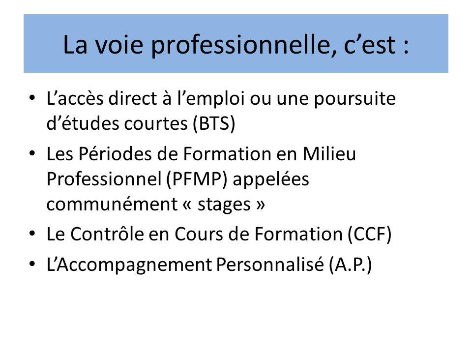 La voie professionnelle, cest : Laccès direct à lemploi ou une poursuite détudes courtes (BTS) Les Périodes de Formation en Milieu Professionnel (PFMP