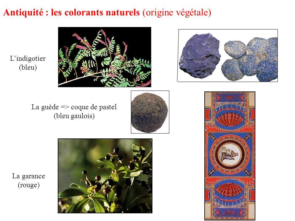La garance (rouge) Lindigotier (bleu) Antiquité : les colorants naturels (origine végétale) La guède => coque de pastel (bleu gaulois)