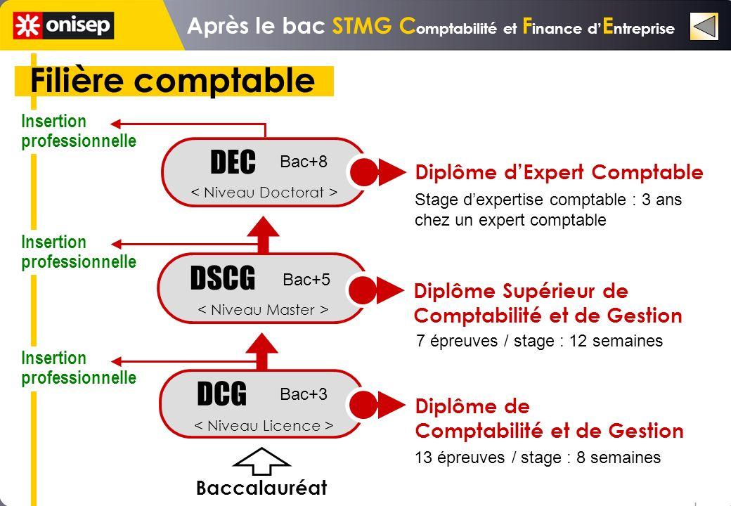 Filière comptable DSCG DEC Stage dexpertise comptable : 3 ans chez un expert comptable 7 épreuves / stage : 12 semaines DCG Diplôme dExpert Comptable Diplôme Supérieur de Comptabilité et de Gestion Insertion professionnelle Insertion professionnelle Insertion professionnelle o o o Bac+8 Bac+5 Bac+3 Baccalauréat 13 épreuves / stage : 8 semaines Diplôme de Comptabilité et de Gestion Après le bac STMG C omptabilité et F inance d E ntreprise