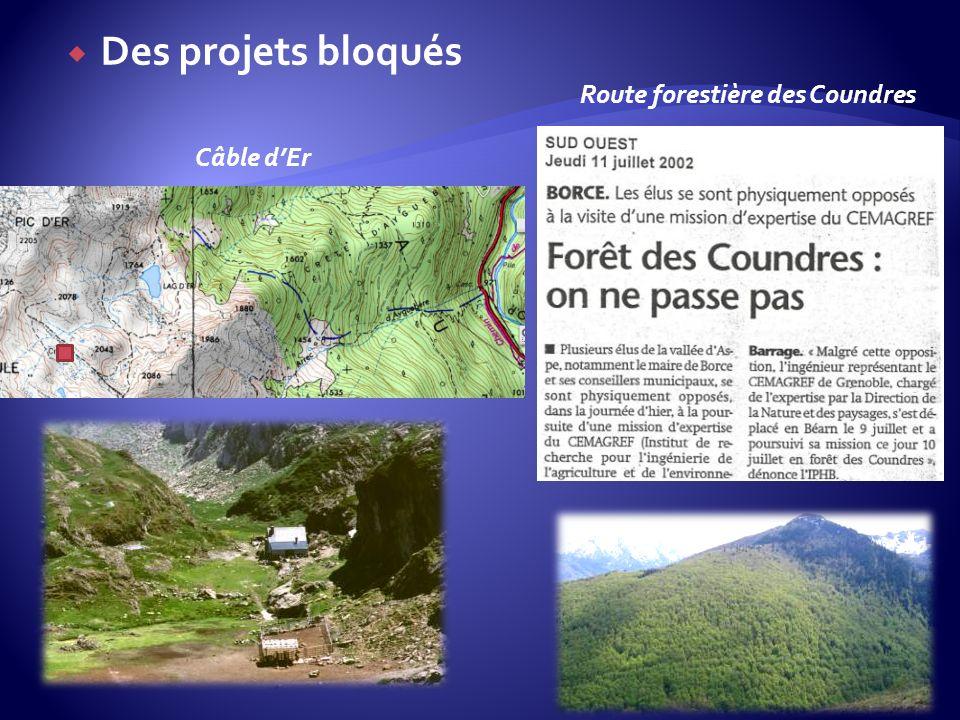 Des projets bloqués Câble dEr Route forestière des Coundres