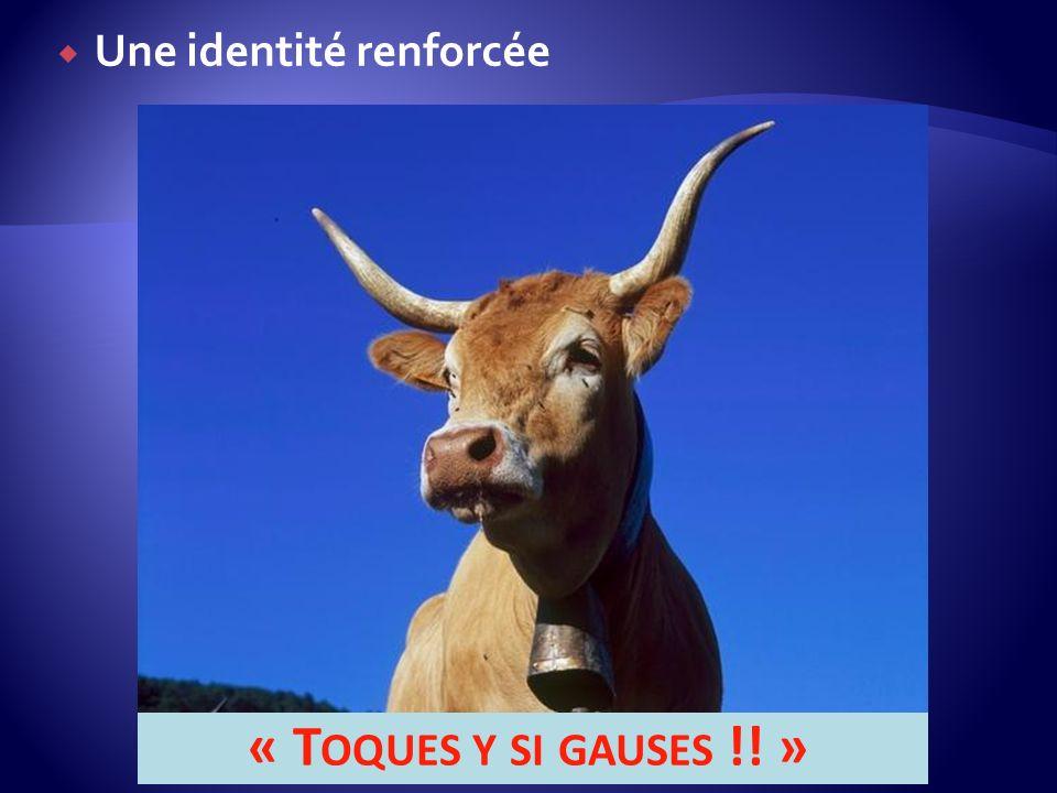 Une identité renforcée « T OQUES Y SI GAUSES !! »