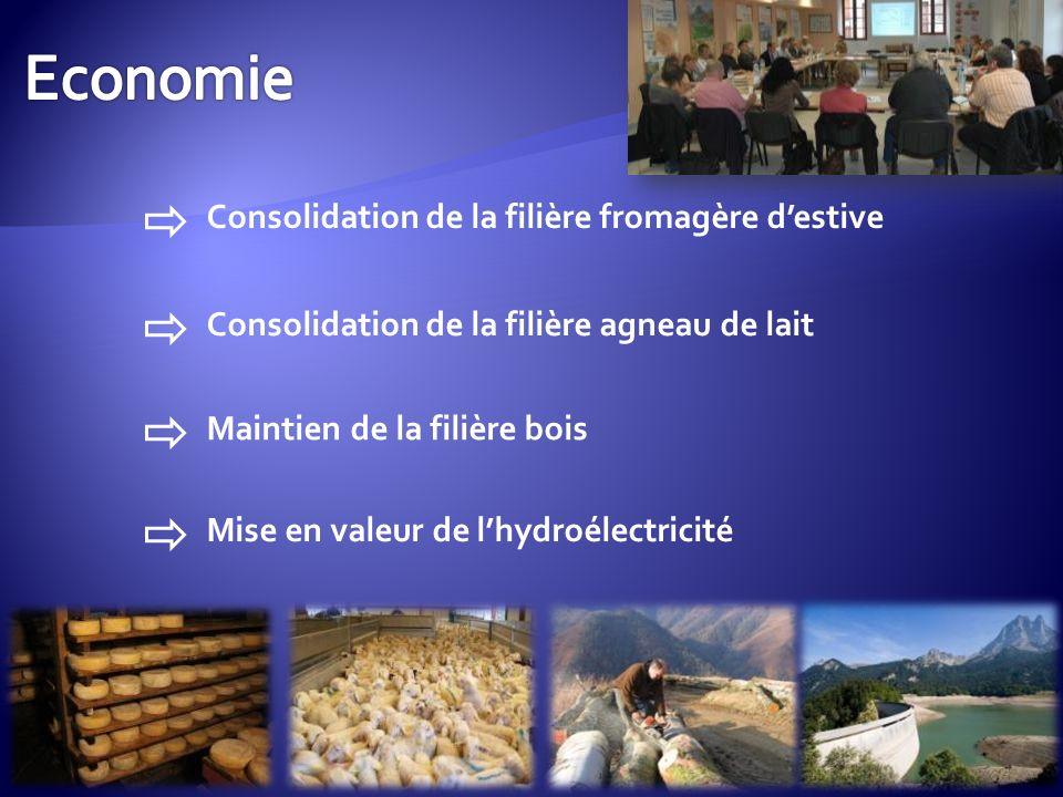 Consolidation de la filière fromagère destive Consolidation de la filière agneau de lait Maintien de la filière bois Mise en valeur de lhydroélectricité