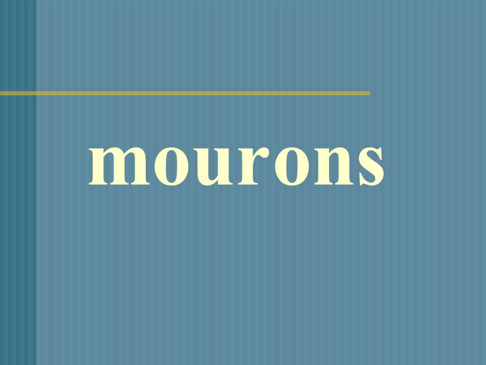mourons