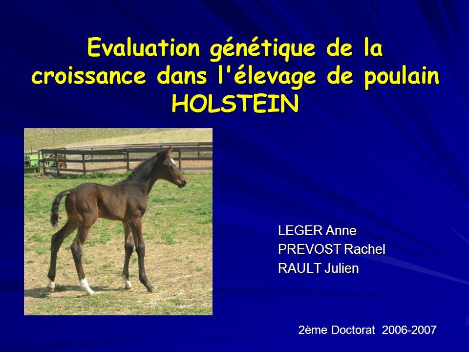 Evaluation génétique de la croissance dans l'élevage de poulain HOLSTEIN LEGER Anne PREVOST Rachel RAULT Julien 2ème Doctorat 2006-2007