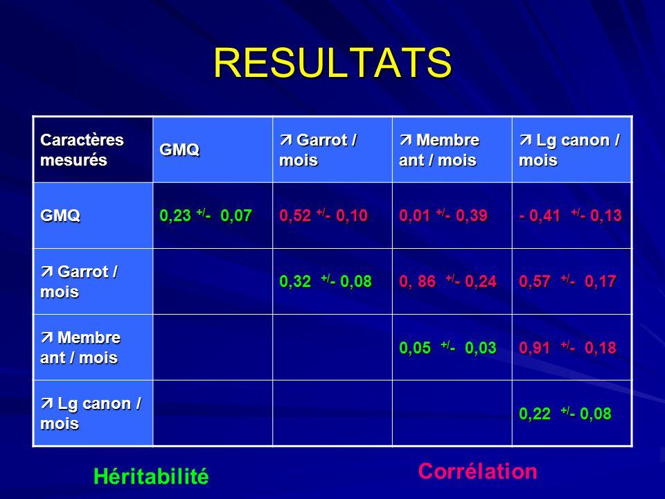RESULTATS Caractères mesurés GMQ Garrot / mois Garrot / mois Membre ant / mois Membre ant / mois Lg canon / mois Lg canon / mois GMQ 0,23 +/ - 0,07 0,