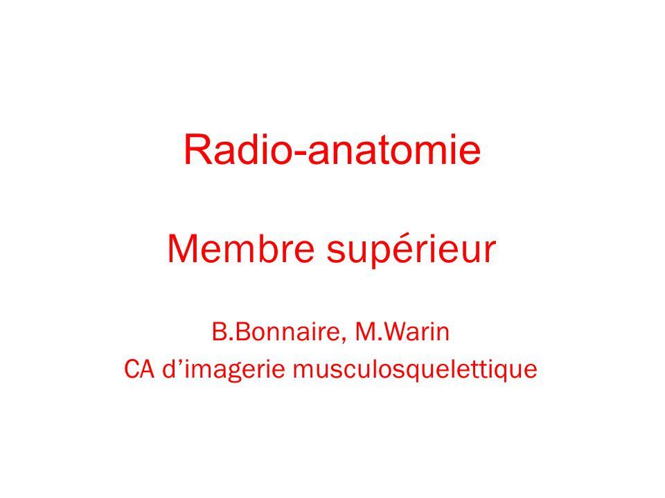 Radio-anatomie Membre supérieur B.Bonnaire, M.Warin CA dimagerie musculosquelettique