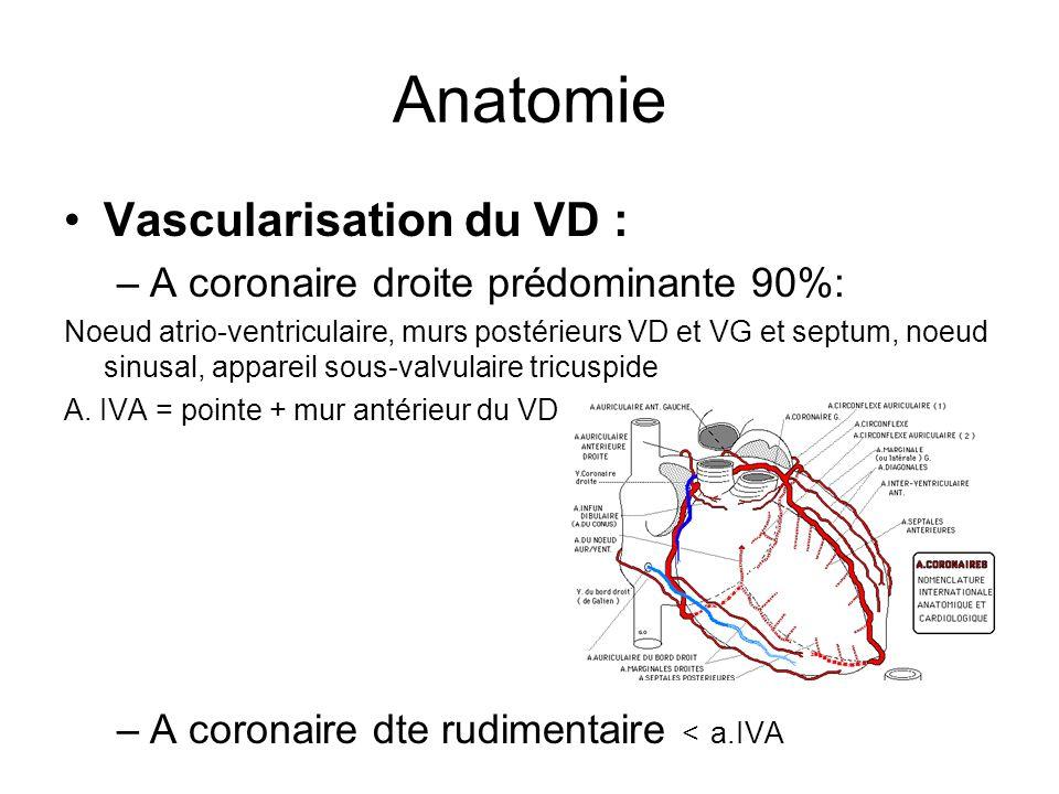 Anatomie Vascularisation du VD : –A coronaire droite prédominante 90%: Noeud atrio-ventriculaire, murs postérieurs VD et VG et septum, noeud sinusal, appareil sous-valvulaire tricuspide A.