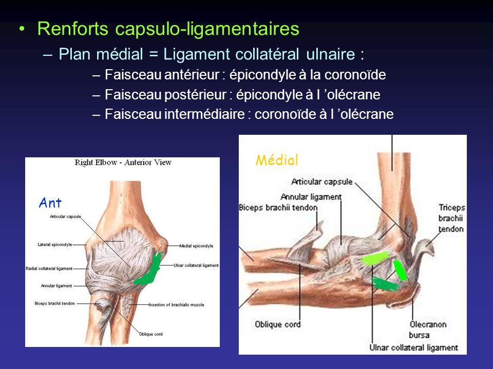 Renforts capsulo-ligamentaires –Plan médial = Ligament collatéral ulnaire : –Faisceau antérieur : épicondyle à la coronoïde –Faisceau postérieur : épi