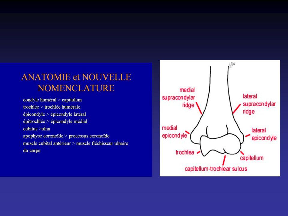 Sagittal T1 Interligne huméro-ulnaire Tendon tricipital Terminaison du muscle biceps