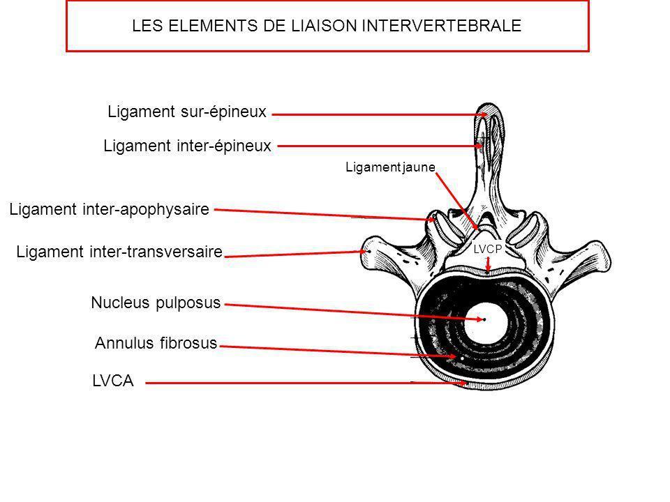 LVCA LVCP Nucleus pulposus Annulus fibrosus Ligament jaune Ligament inter-épineux Ligament sur-épineux Ligament inter-transversaire Ligament inter-apo