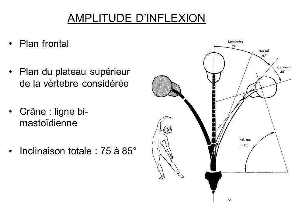 AMPLITUDE DINFLEXION Plan frontal Plan du plateau supérieur de la vértebre considérée Crâne : ligne bi- mastoïdienne Inclinaison totale : 75 à 85°