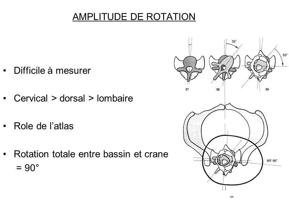 AMPLITUDE DE ROTATION Difficile à mesurer Cervical > dorsal > lombaire Role de latlas Rotation totale entre bassin et crane = 90°