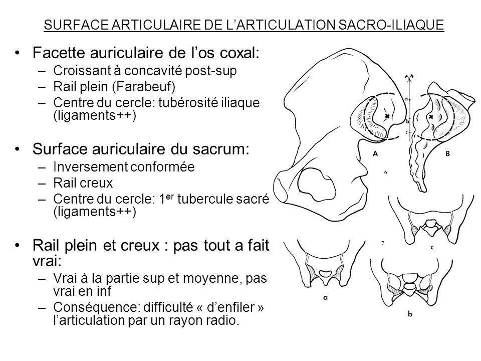 SURFACE ARTICULAIRE DE LARTICULATION SACRO-ILIAQUE Facette auriculaire de los coxal: –Croissant à concavité post-sup –Rail plein (Farabeuf) –Centre du
