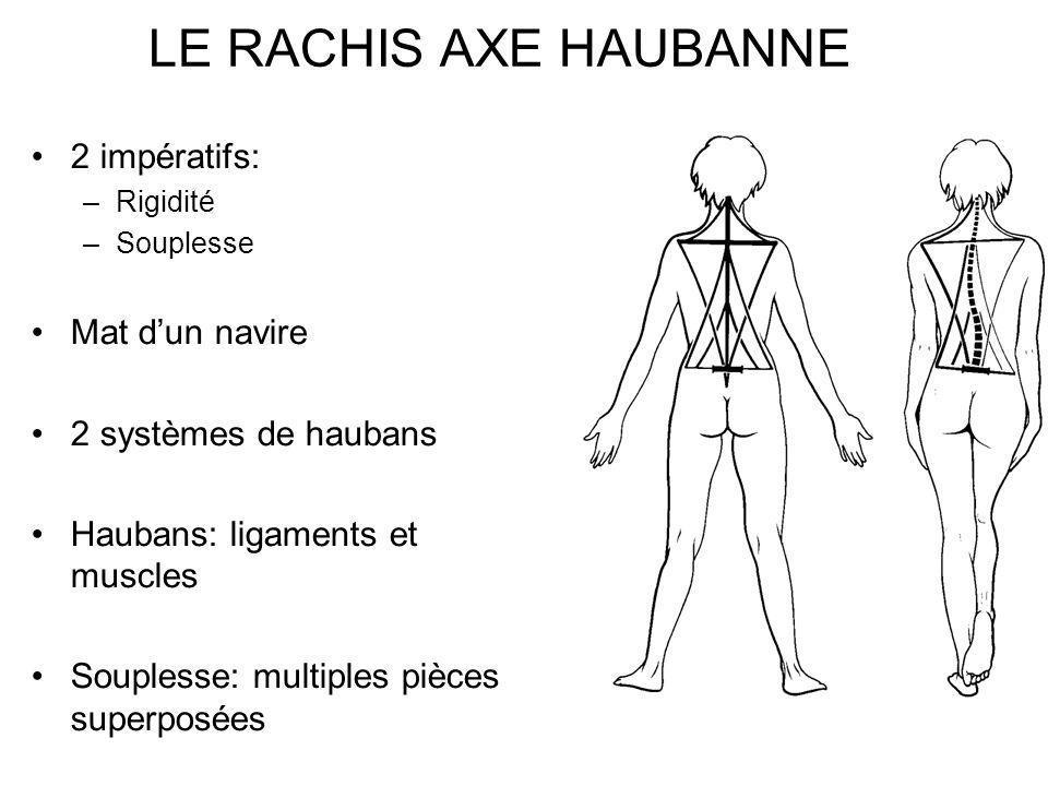 LE RACHIS AXE HAUBANNE 2 impératifs: –Rigidité –Souplesse Mat dun navire 2 systèmes de haubans Haubans: ligaments et muscles Souplesse: multiples pièc