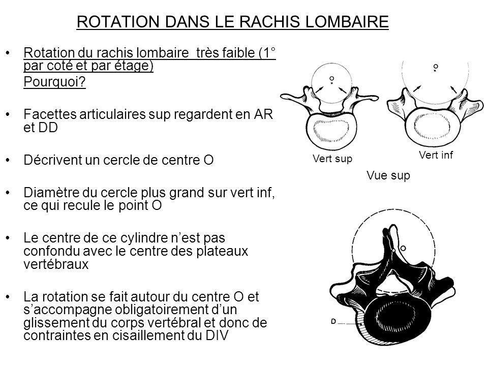 ROTATION DANS LE RACHIS LOMBAIRE Rotation du rachis lombaire très faible (1° par coté et par étage) Pourquoi? Facettes articulaires sup regardent en A