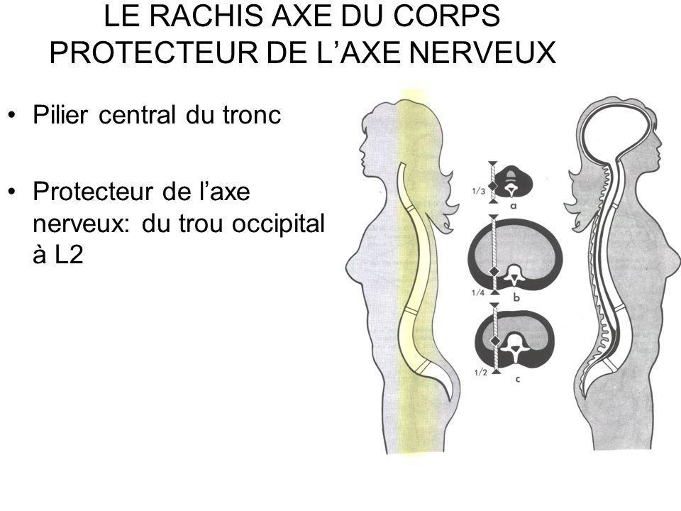 RAPPORT DE L AXE NERVEUX AVEC LE RACHIS CERVICAL ETAGE CERVICAL INF Le point le plus sollicité entre C5 et C6 ( freq max de luxation ant) Moelle comprimée entre –Arc post de C5 –Angle post-sup du corps de C6 Prévention +++ lors des manipulations des blessés