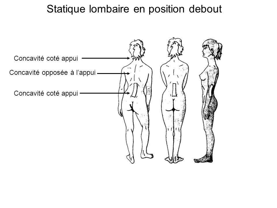Statique lombaire en position debout Concavité coté appui Concavité opposée à lappui Concavité coté appui