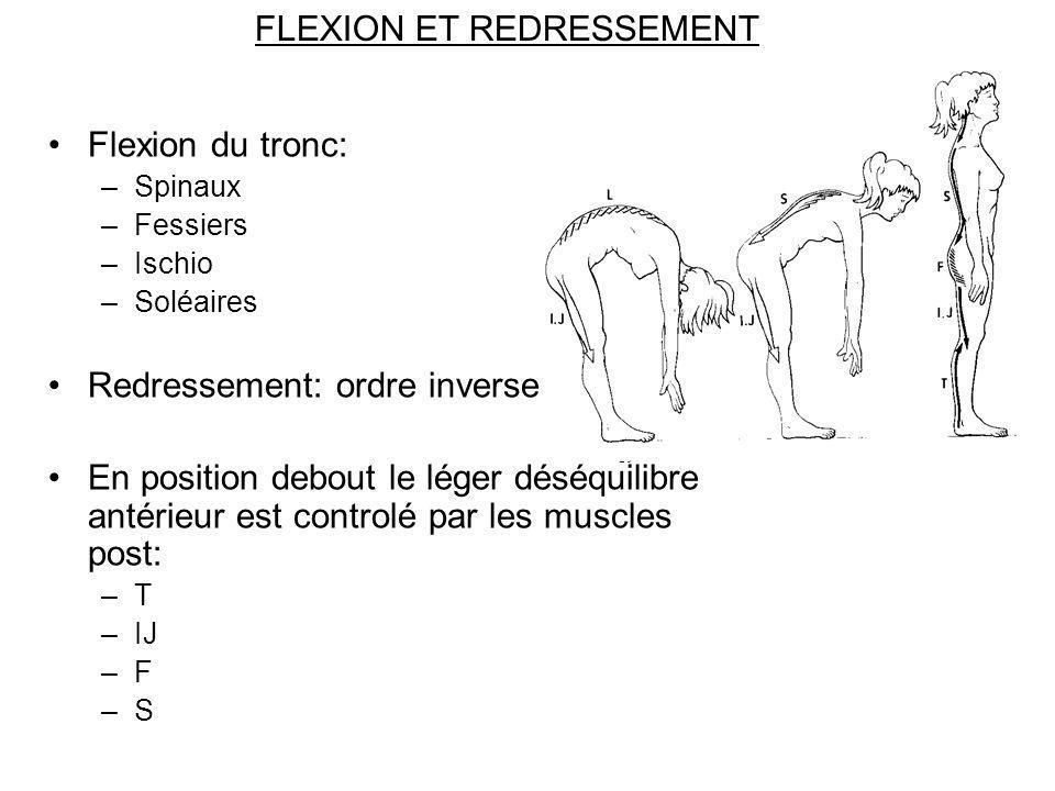 FLEXION ET REDRESSEMENT Flexion du tronc: –Spinaux –Fessiers –Ischio –Soléaires Redressement: ordre inverse En position debout le léger déséquilibre a