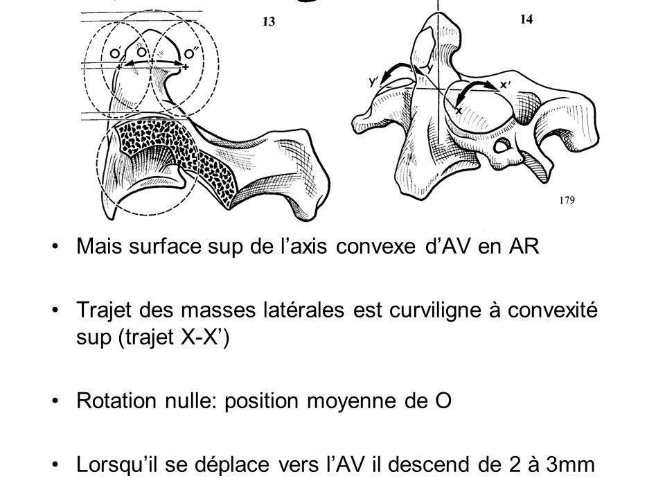 Mais surface sup de laxis convexe dAV en AR Trajet des masses latérales est curviligne à convexité sup (trajet X-X) Rotation nulle: position moyenne d