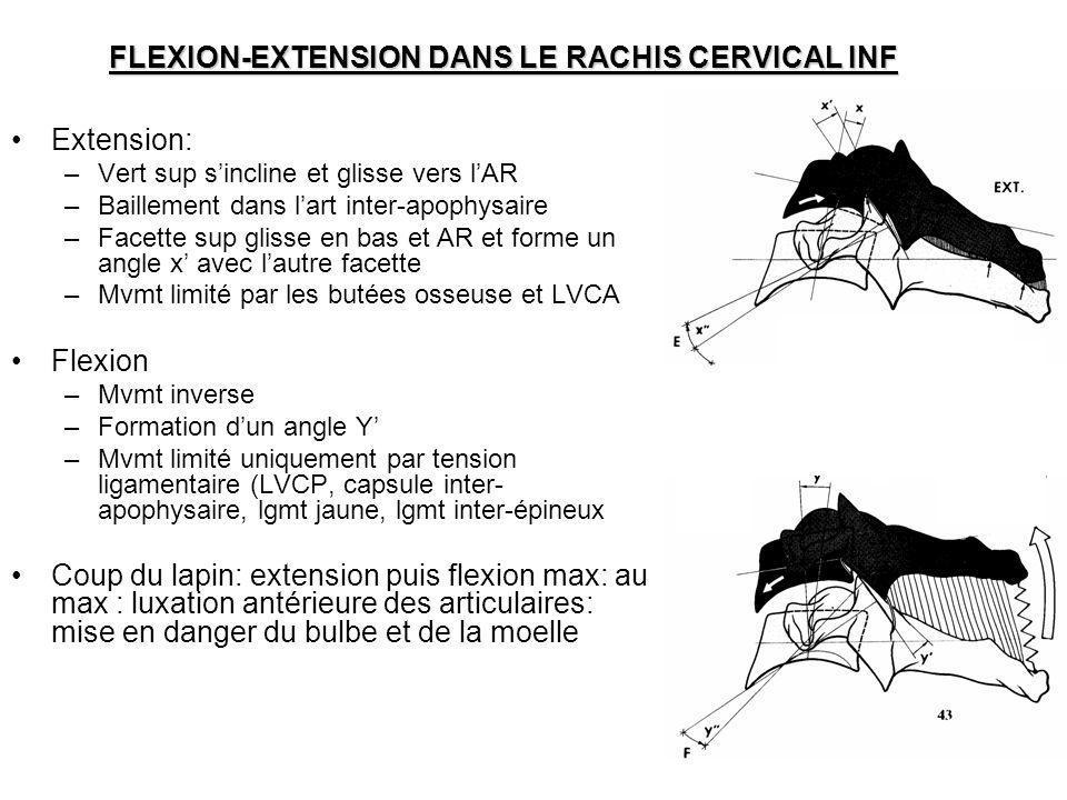FLEXION-EXTENSION DANS LE RACHIS CERVICAL INF Extension: –Vert sup sincline et glisse vers lAR –Baillement dans lart inter-apophysaire –Facette sup gl