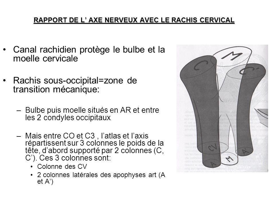 RAPPORT DE L AXE NERVEUX AVEC LE RACHIS CERVICAL Canal rachidien protège le bulbe et la moelle cervicale Rachis sous-occipital=zone de transition méca