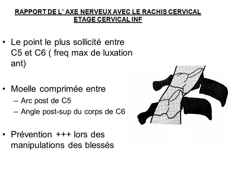 RAPPORT DE L AXE NERVEUX AVEC LE RACHIS CERVICAL ETAGE CERVICAL INF Le point le plus sollicité entre C5 et C6 ( freq max de luxation ant) Moelle compr