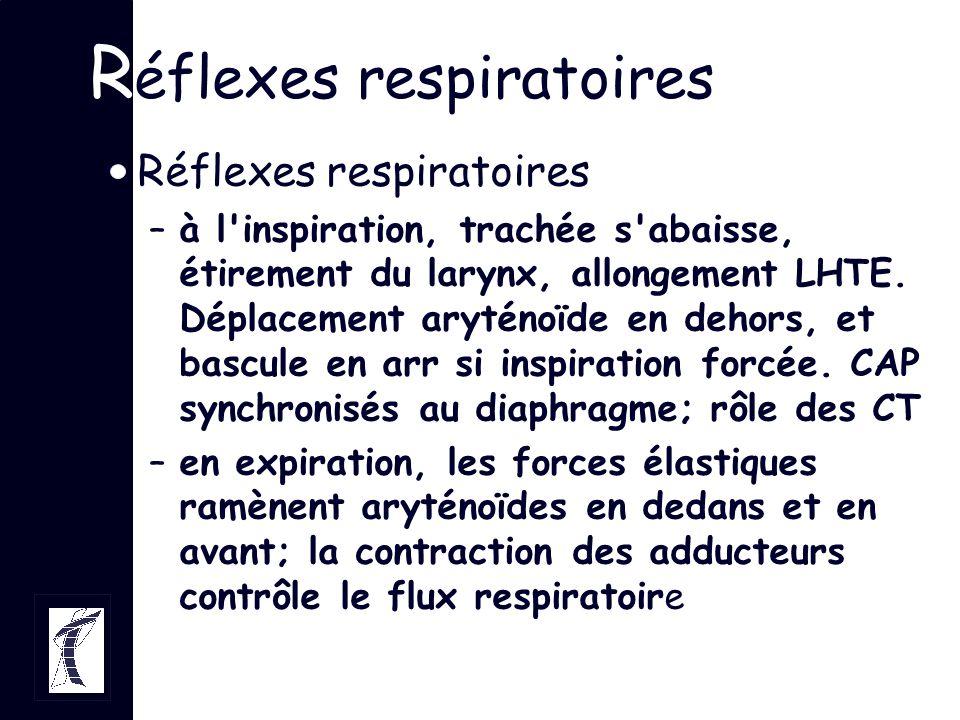 R éflexes respiratoires –à l'inspiration, trachée s'abaisse, étirement du larynx, allongement LHTE. Déplacement aryténoïde en dehors, et bascule en ar