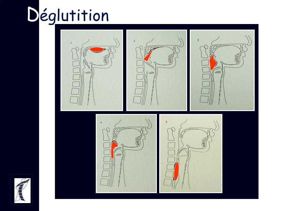D églutition