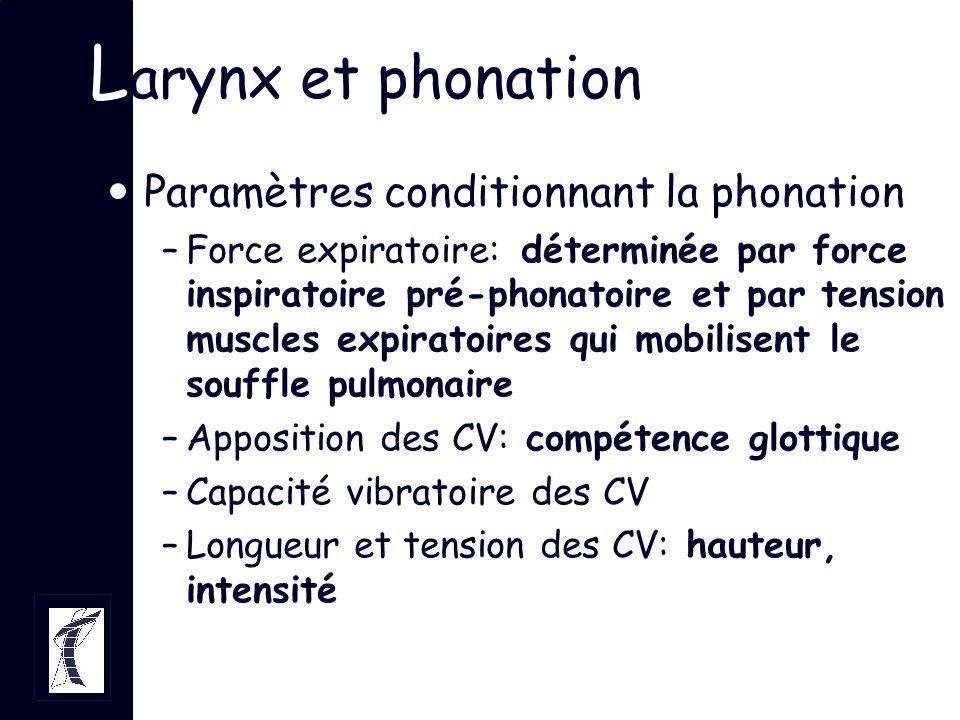 L arynx et phonation Paramètres conditionnant la phonation –Force expiratoire: déterminée par force inspiratoire pré-phonatoire et par tension muscles