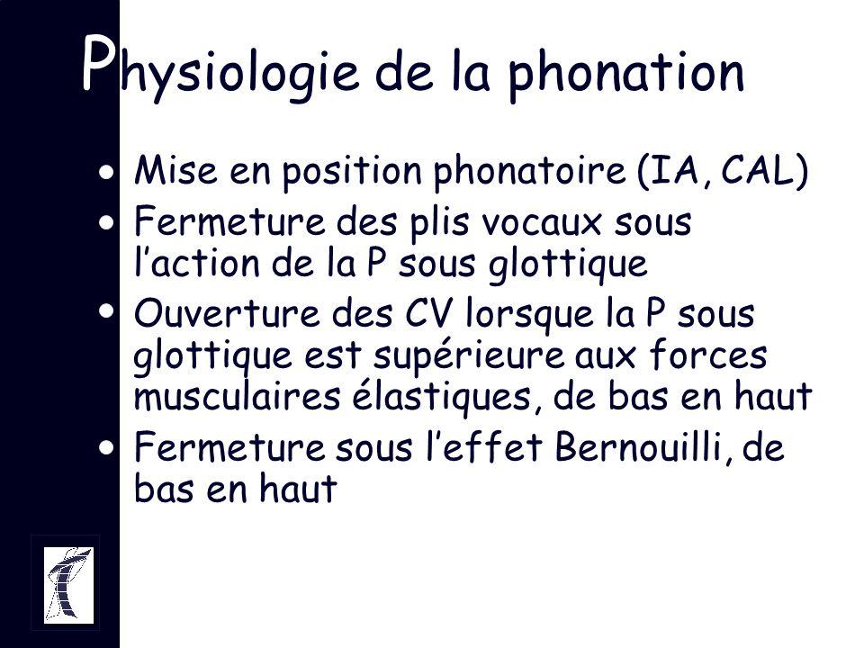 P hysiologie de la phonation Mise en position phonatoire (IA, CAL) Fermeture des plis vocaux sous laction de la P sous glottique Ouverture des CV lors