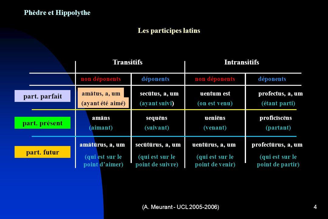 (A. Meurant - UCL 2005-2006)4 Phèdre et Hippolythe Les participes latins TransitifsIntransitifs déponentsnon déponents déponents part. parfait amātus,