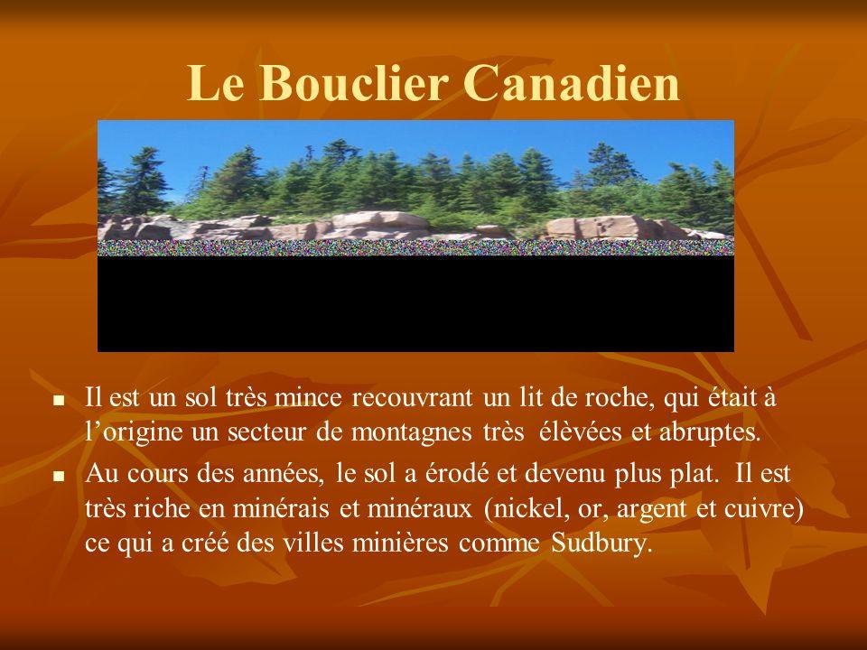 Le Bouclier Canadien Il est un sol très mince recouvrant un lit de roche, qui était à lorigine un secteur de montagnes très élèvées et abruptes.