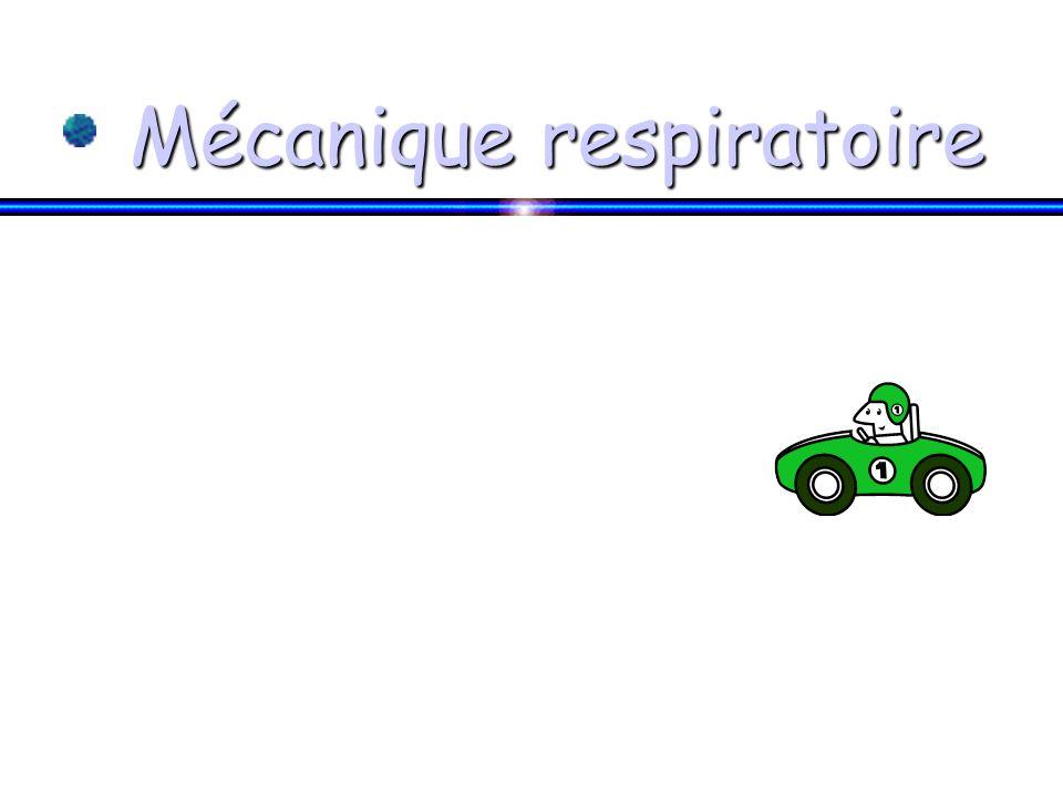 Mécanique respiratoire