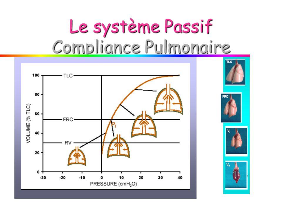 Le système Passif Compliance Pulmonaire