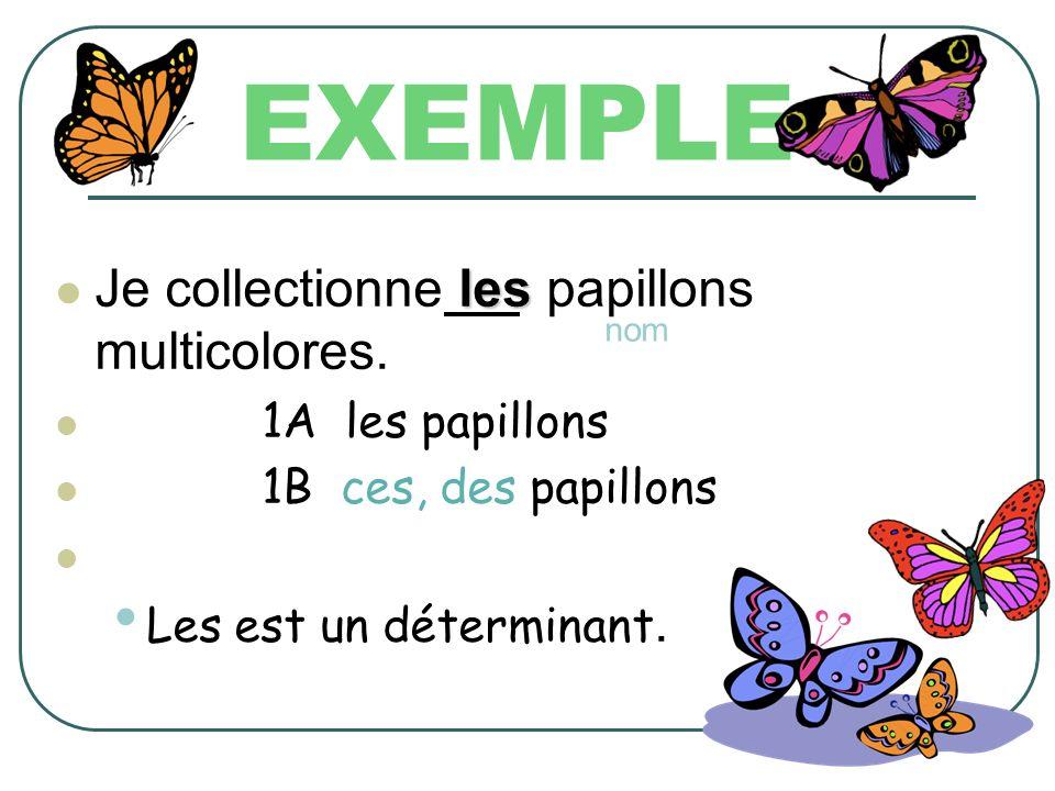 EXEMPLE Je collectionne les papillons multicolores. 4A je = la personne qui parle Je est un pronom.