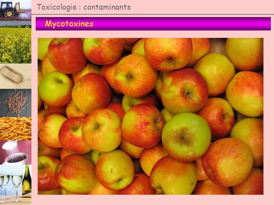 Mycotoxines Toxicologie : contaminants