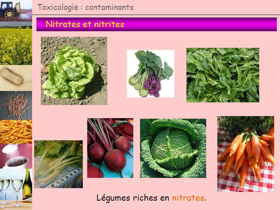 Nitrates et nitrites Toxicologie : contaminants Légumes riches en nitrates.