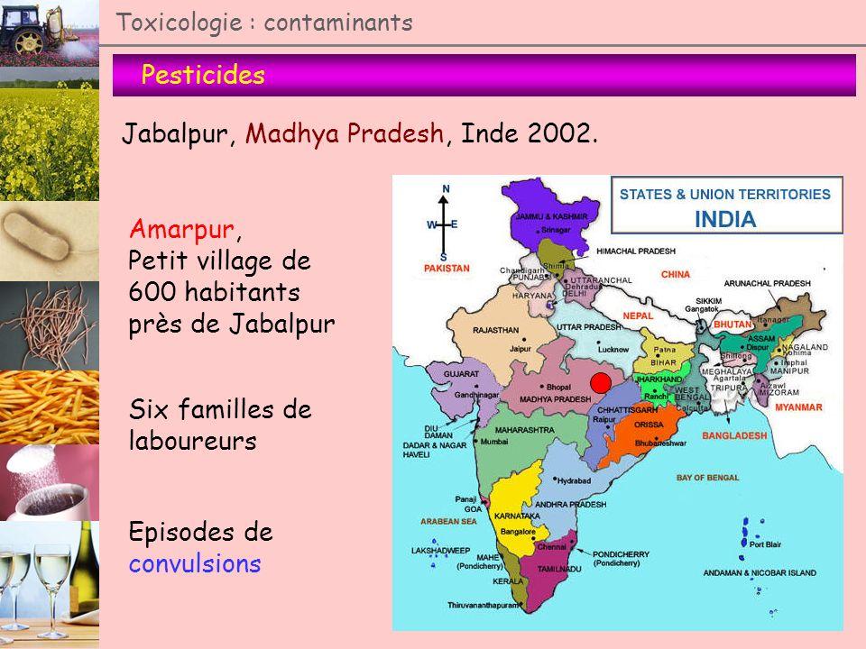 Pesticides Toxicologie : contaminants Jabalpur, Madhya Pradesh, Inde 2002. Amarpur, Petit village de 600 habitants près de Jabalpur Six familles de la
