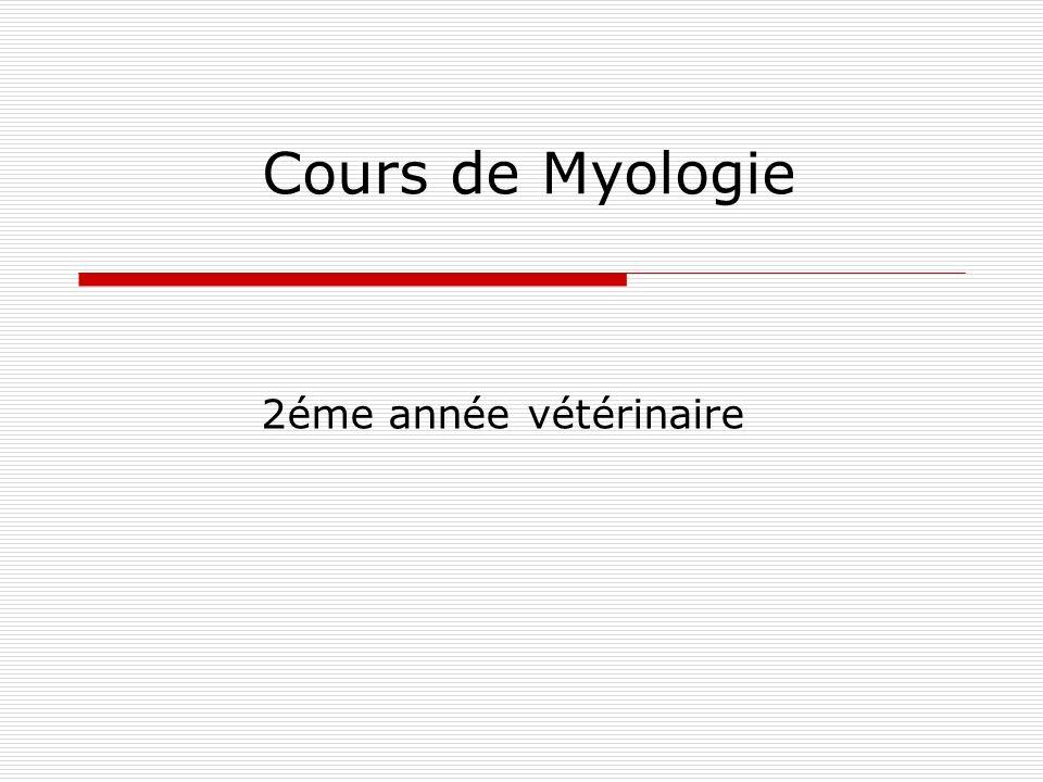 Cours de Myologie 2éme année vétérinaire
