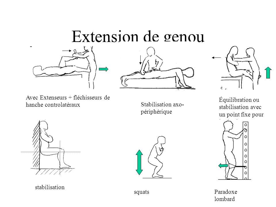 Extension de genou Avec Extenseurs + fléchisseurs de hanche controlatéraux Stabilisation axo- périphérique Équilibration ou stabilisation avec un point fixe pour les jambes stabilisation squatsParadoxe lombard