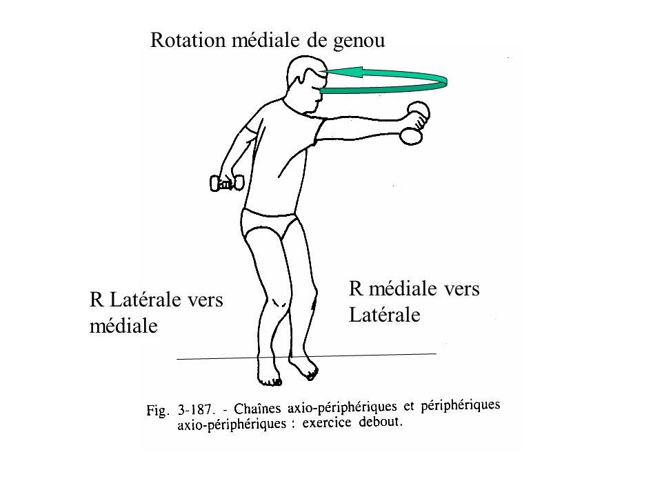 Rotation médiale de genou R Latérale vers médiale R médiale vers Latérale