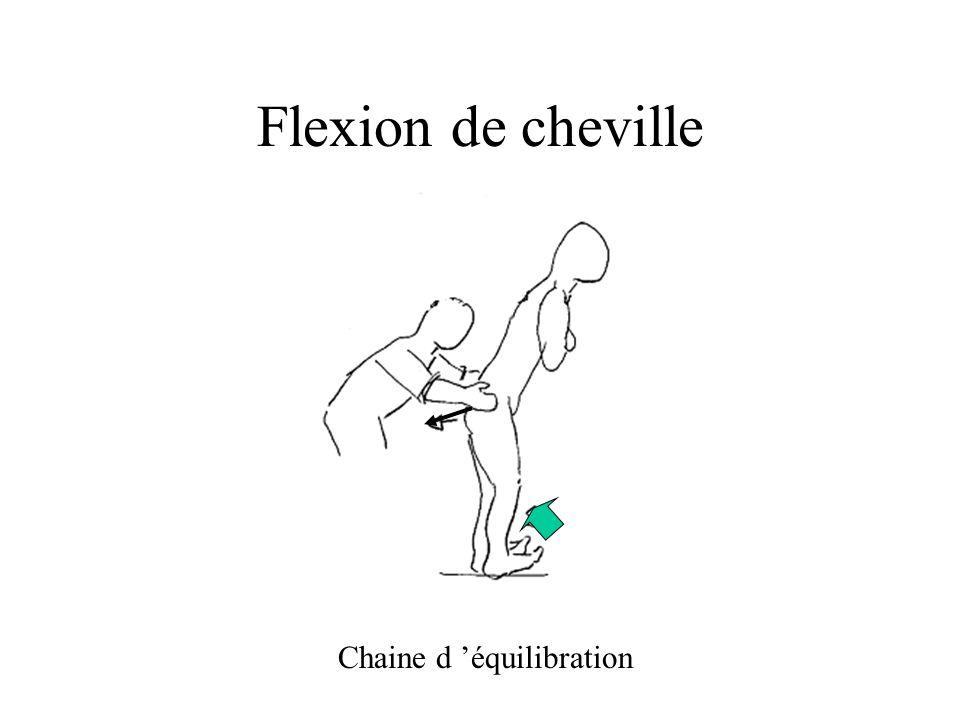 Flexion de cheville Chaine d équilibration