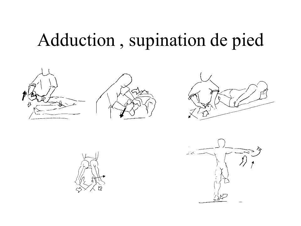 Adduction, supination de pied