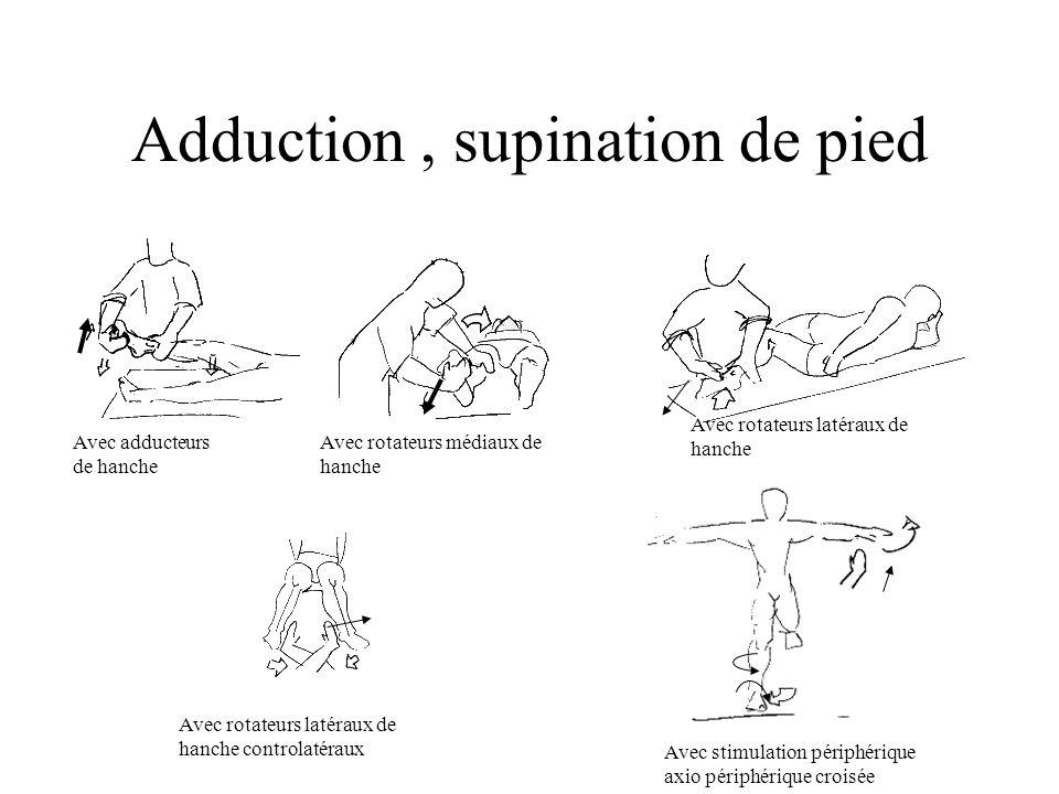 Avec adducteurs de hanche Avec rotateurs médiaux de hanche Avec rotateurs latéraux de hanche controlatéraux Avec stimulation périphérique axio périphérique croisée Avec rotateurs latéraux de hanche